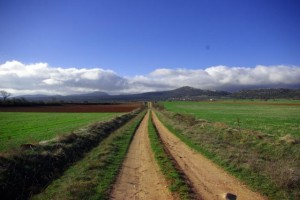 Camino a Campino
