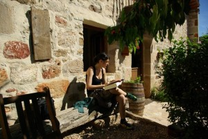 Tranquilidad en el jardín de Caléndula